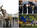 День в фото: Порошенко под дождем, тайские слоны и американские избиратели