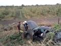 В Донецкой области легковушка врезалась в дерево, есть жертвы