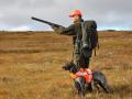 В США собака выстрелила в охотника из дробовика