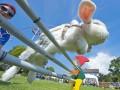Животные недели: соревнования кроликов, носороги и охота пеликана (фото)