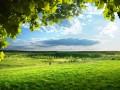 Прогноз погоды на выходные: в Украине почти без дождей