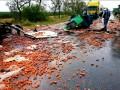 На Николаевщине в лобовом столкновении грузовиков погибли два водителя