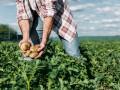 Депутаты готовят неприятный сюрприз фермерам в виде налога