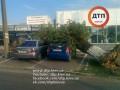 В Киеве на Оболони дерево раздавило автомобиль