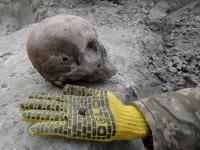 Возле Ровно под асфальтом нашли могилу воинов УПА