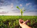 У Зеленского считают, что рост ВВП увеличится после открытия рынка земли