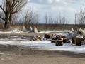 Три бойца ВСУ погибли на минах из-за халатности – Офис генпрокурора