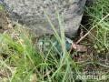 В Запорожской области муляж гранаты сбил график поездов в сторону Мариуполя