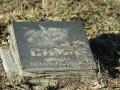 В Киеве снесут 140 могил на кладбище животных