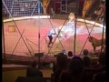 В Луганске лев напал на циркача