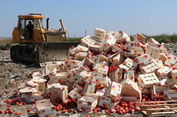 В Керчи уничтожили 4,4 тонны нектарина