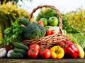 Украина поставила антирекорд по поставкам агропродукции в ЕС