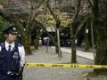 В Японии на фестивале прогремели два взрыва
