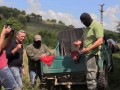 Sky News: Из Украины нелегально продают оружие в Европу