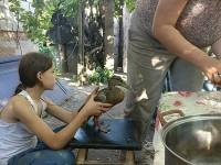 В Киеве на Теремках продолжается мор птиц