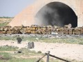 На уничтоженной авиабазе в Сирии было химоружие - волонтеры