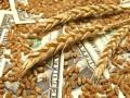 НАБУ задержало экс-руководителя зерновой корпорации Украины