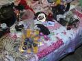 Супруги организовали секс-бизнес в Украине