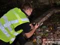 В Тернополе дети нашли человеческие останки среди мусора