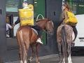 В столице курьеры Glovo доставляли еду на лошадях