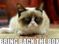 Время унывать: популярный в сети хмурый кот снялся в рекламе
