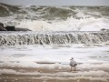 На Одессу обрушился шторм