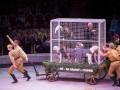 Деды выступали: В России показали цирковое представление ко дню Победы