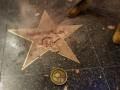 С кувалдой и киркой в руках: на Аллее Славы разбили звезду Трампа