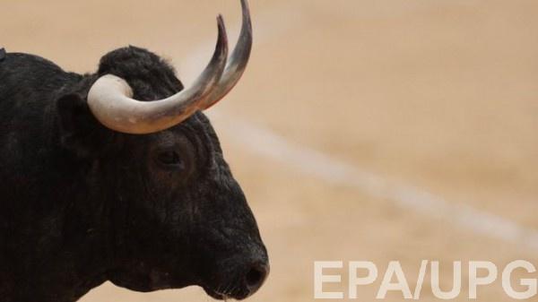 Во время забега быков погибла туристка