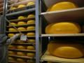Роспотребнадзор проинспектирует две украинские лаборатории, которые будут следить за сыром