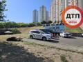 В Киеве произошло смертельное ДТП с участием лося