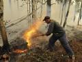 Полпред президента РФ: Пожары в Забайкалье устроили диверсанты