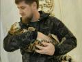 Помоги найти кота: В американском шоу высмеяли Кадырова