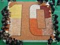 Огромная мозаика из суши попала в Книгу рекордов Гиннесса