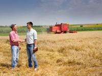 Украинский аграрный экспорт в ЕС вырос на треть