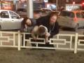 У попа была машина: в РФ священник побил бизнесмена