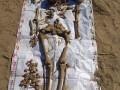 В Житомирской области мужчина искал монеты, а нашел останки солдат Вермахта