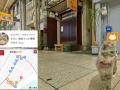 В Японии создали кошачью онлайн карту