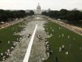 В Вашингтоне выложили инсталляцию из миллиона костей