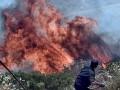 Лесные пожары в Греции стал самыми смертоносными за 100 лет