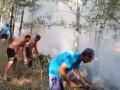 Украинцы помогли потушить лесной пожар в Польше
