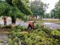 Непогода накрыла Мариуполь