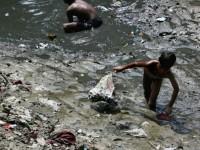 В Индии реки Ганг и Ямуна приравняли к живым существам