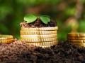 Дешевле не бывает: почему стоимость земли в 11 раз ниже реальной