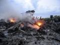 Кость, найденная журналистом на Донбассе, принадлежит жертве MH17