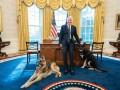 Угроза в Белом доме. Проблемы Байдена с собаками