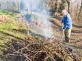 Какой штраф грозит украинцам, сжигающим сухие листья