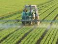 В сельском хозяйстве выросли зарплаты - исследование