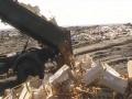 В России уничтожили 22 тонны санкционных яблок из Украины