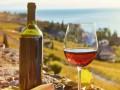 Россия заявила о резком ухудшении качества грузинских вин